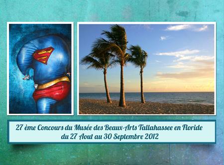 Exposition collective: 27ème Concours du Musée des Beaux-Arts Tallahassee en Floride – USA du 27 Aout au 30 Septembre 2012